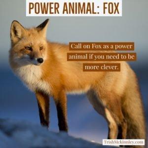 Power Animal. FOX Insta | Trish Mckinnley
