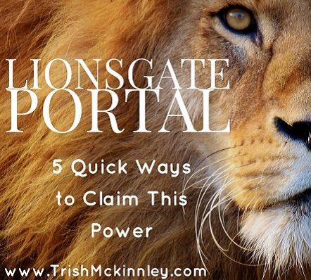 lionsgate portal 5 quick ways to harness the power