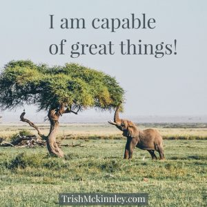 elephant on plain, trunk reaching for tree leaves. Affirmation: I am capable of great things!
