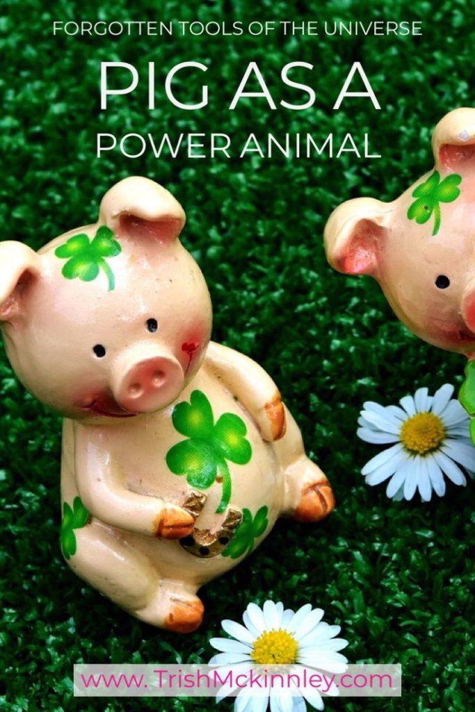 pig power animal manifest money